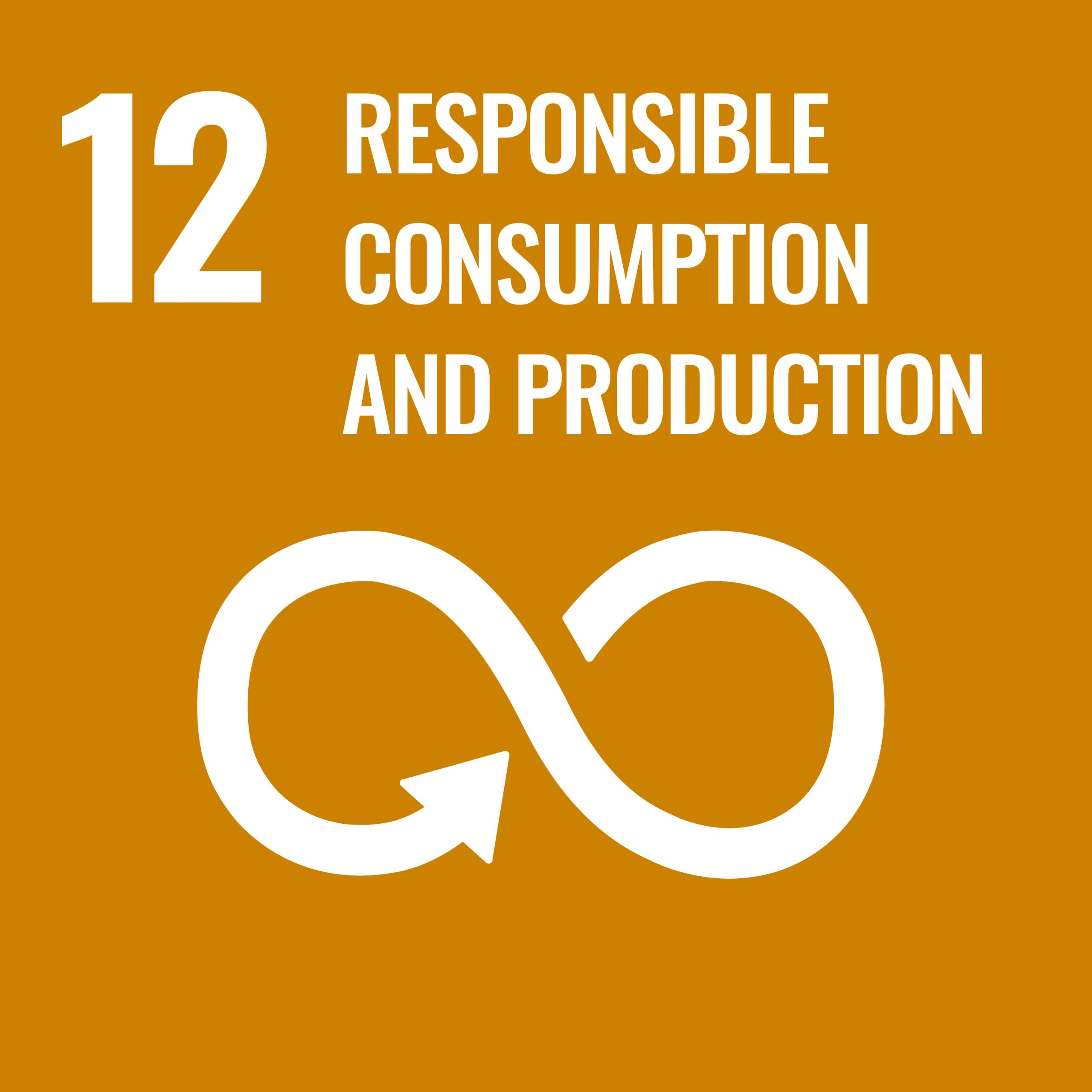 Rsponsible consumption and production - SDG 12