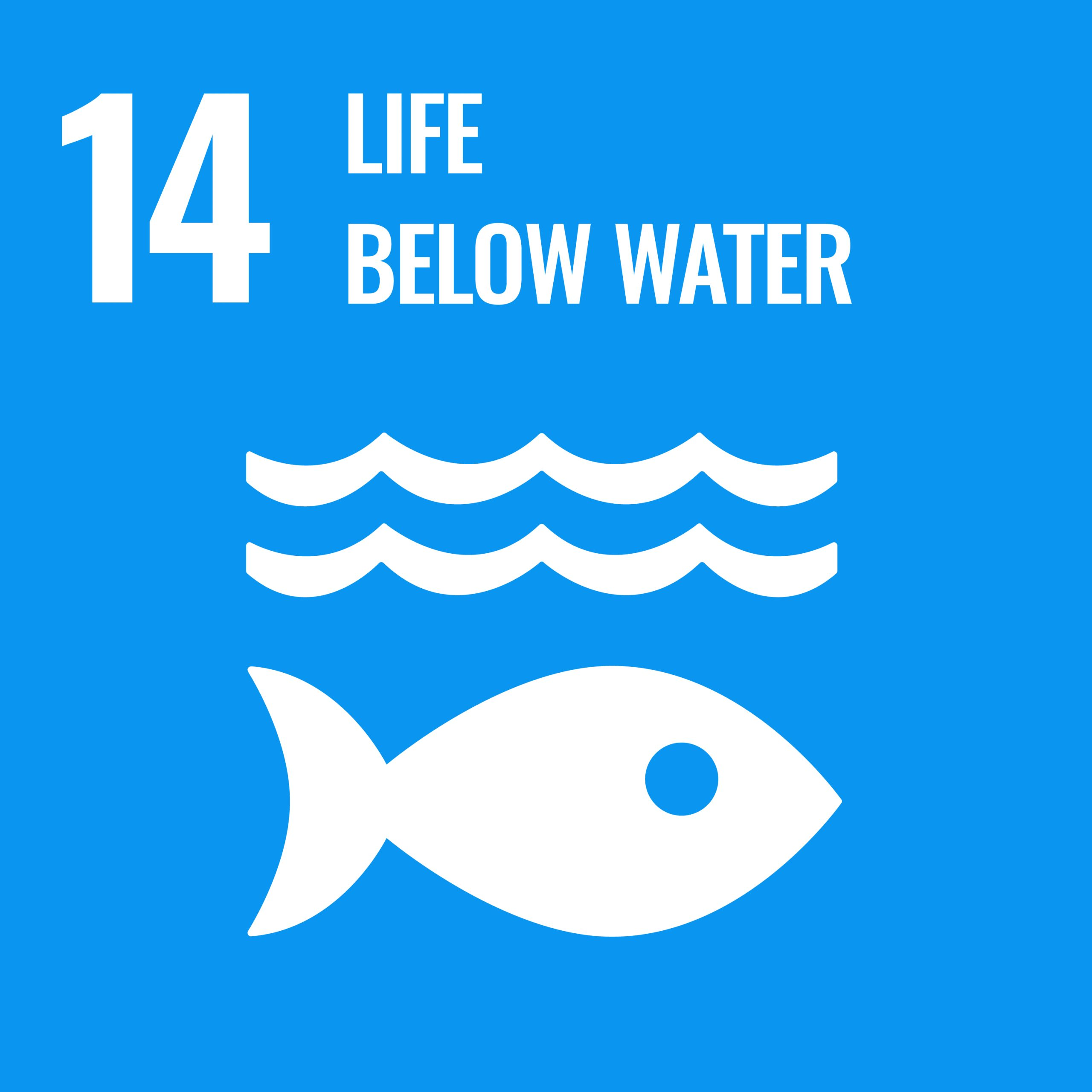 Life below water - SDG 14