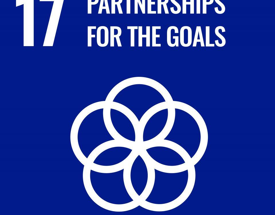Partnershops for goals - SDG 17