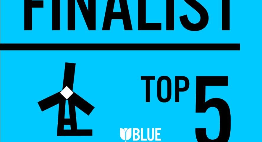 Top 5 der Blue Tulip Awards