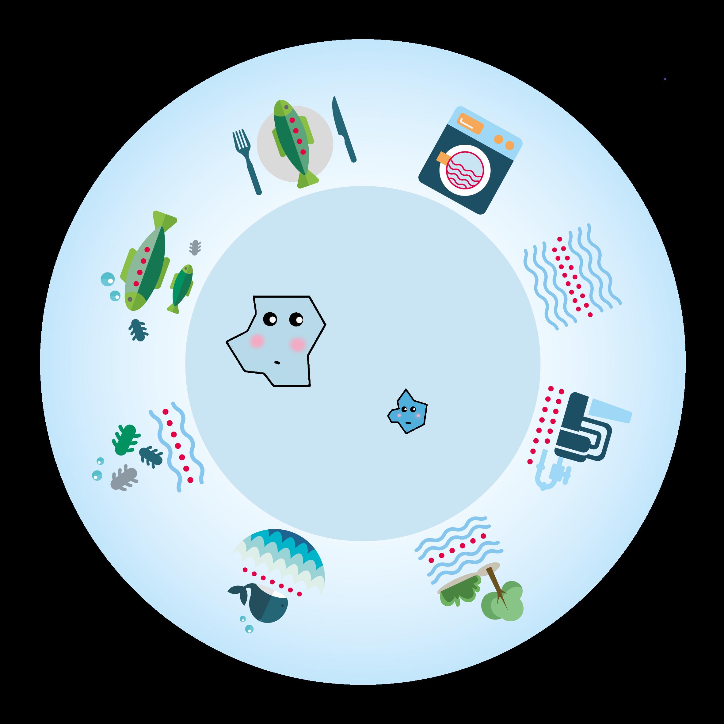 MAxi und Charlie, Mikroplastikpartikel auf dem Weg in unsere Nahrungskette