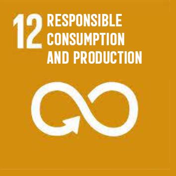SDG-EN-12