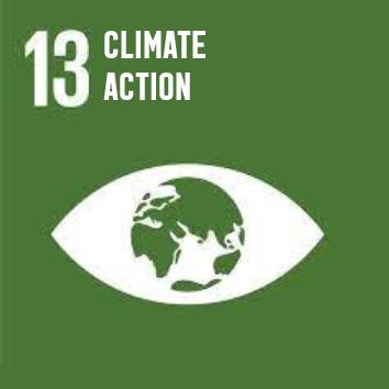 SDG-EN-13