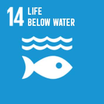SDG-EN-14