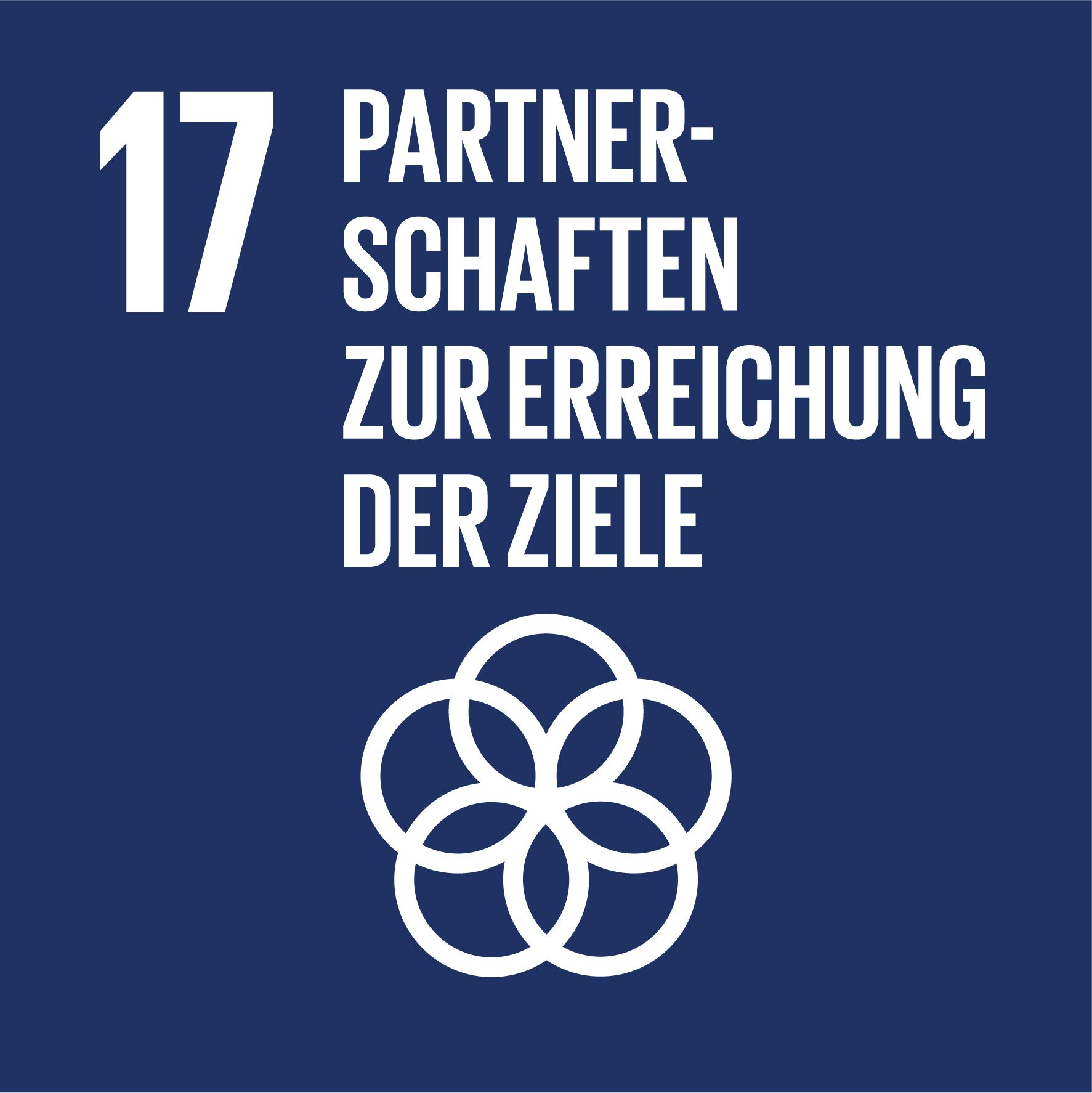 SDG 17 Partnerschaften