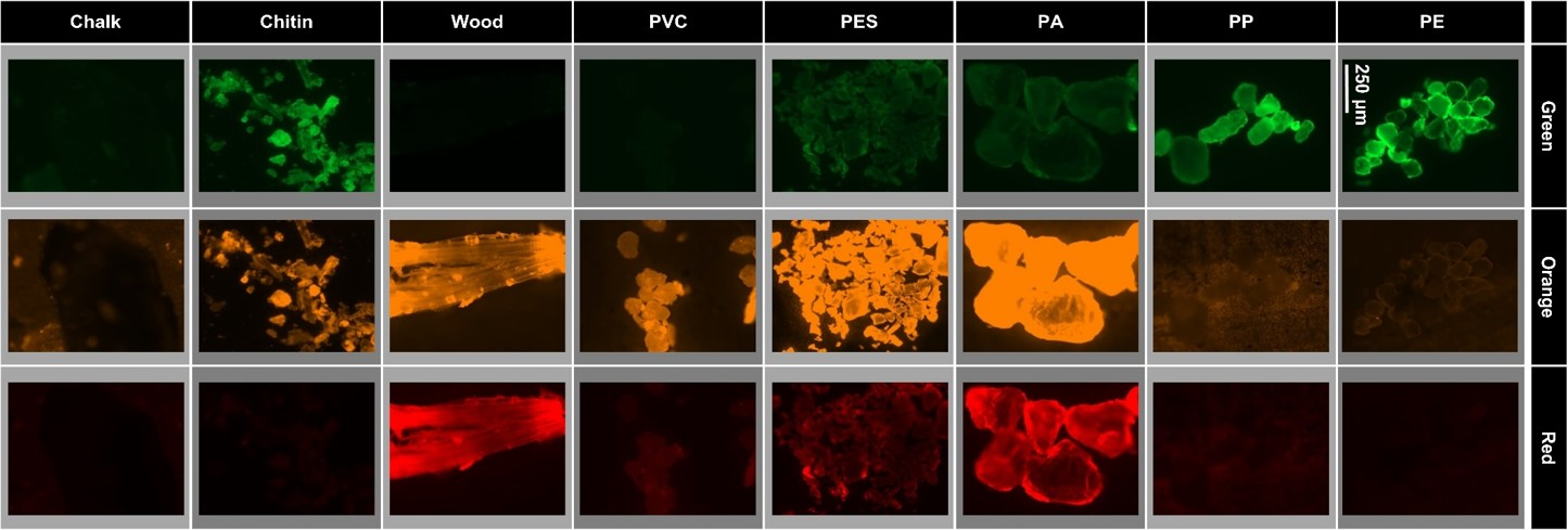 Detection of microplastic particles with fluorescence dyes