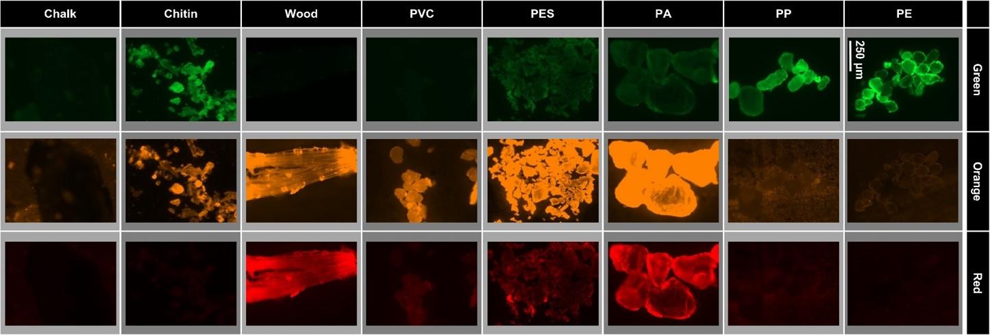 Mikroplastik detektieren mit Fluoreszenzmarkern