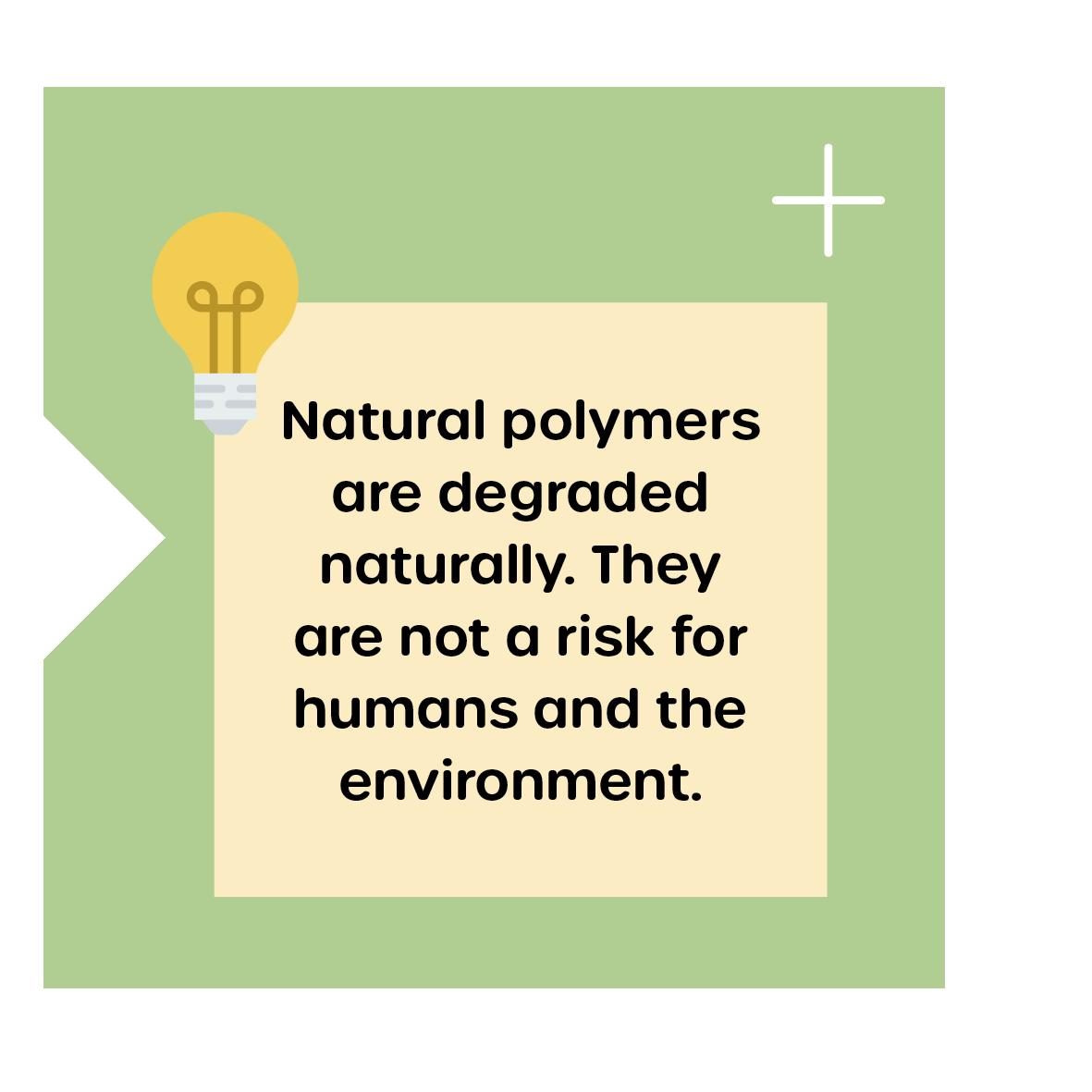 Degradation of Biopolymers