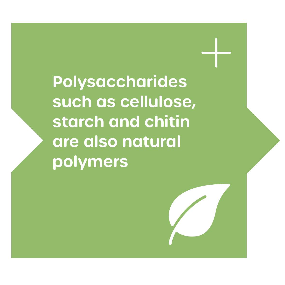 Polysaacharide are biopolymers
