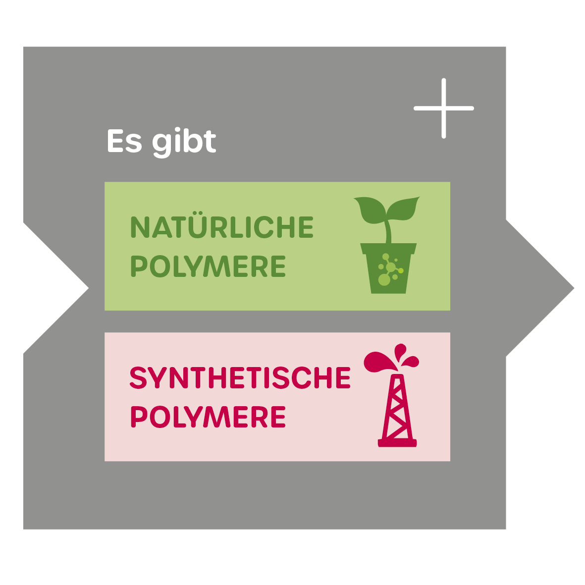Unterteilung Polymere