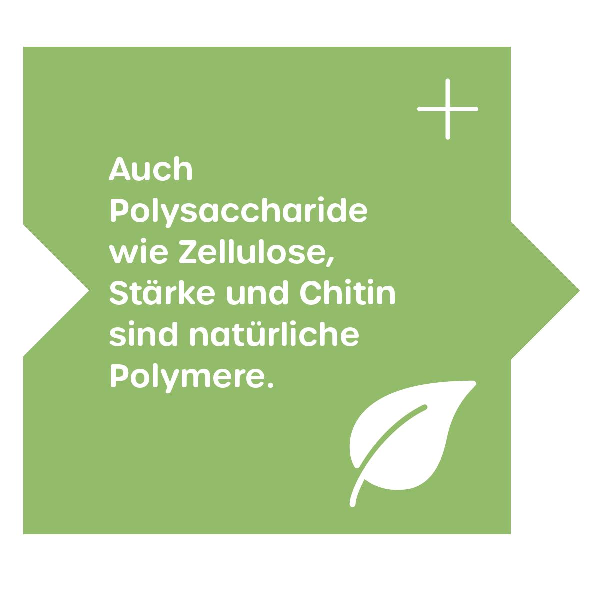 Natürliche Polymere: Polysaccharide
