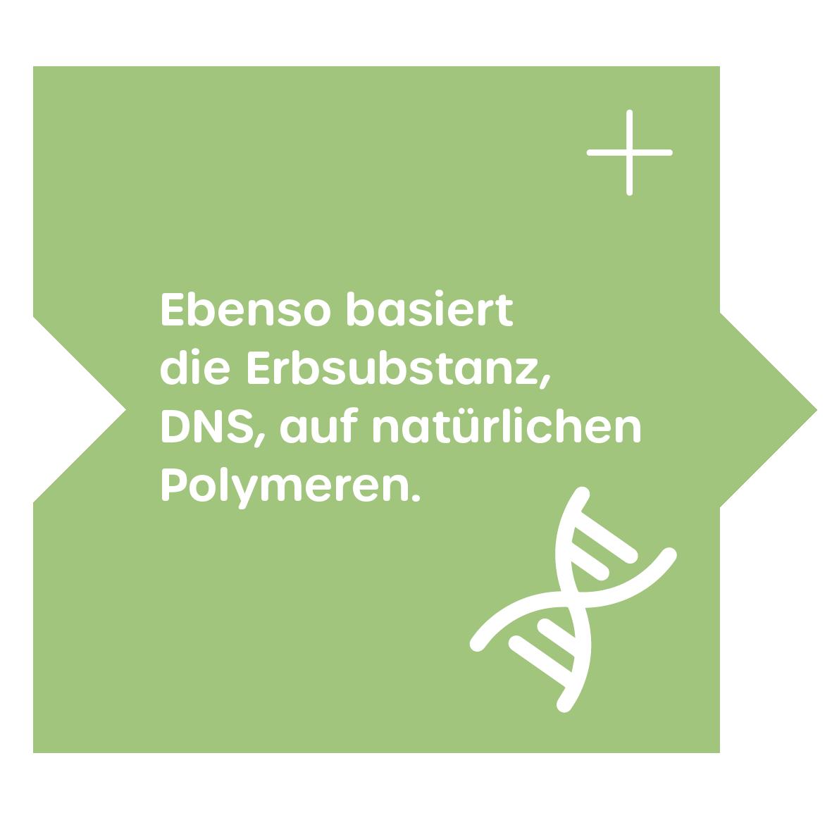 Erbsubstanz- natürliche Polymere - DNS