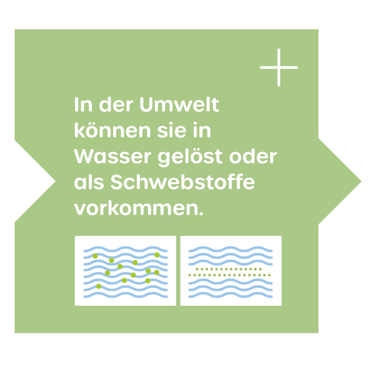Natürliche Polymere in der Umwelt
