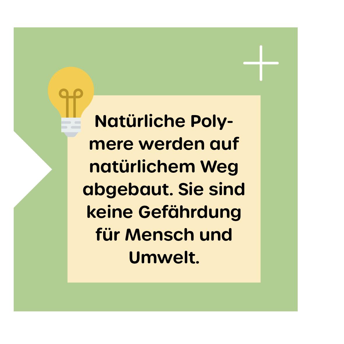 Abbauwege natürlicher Polymere