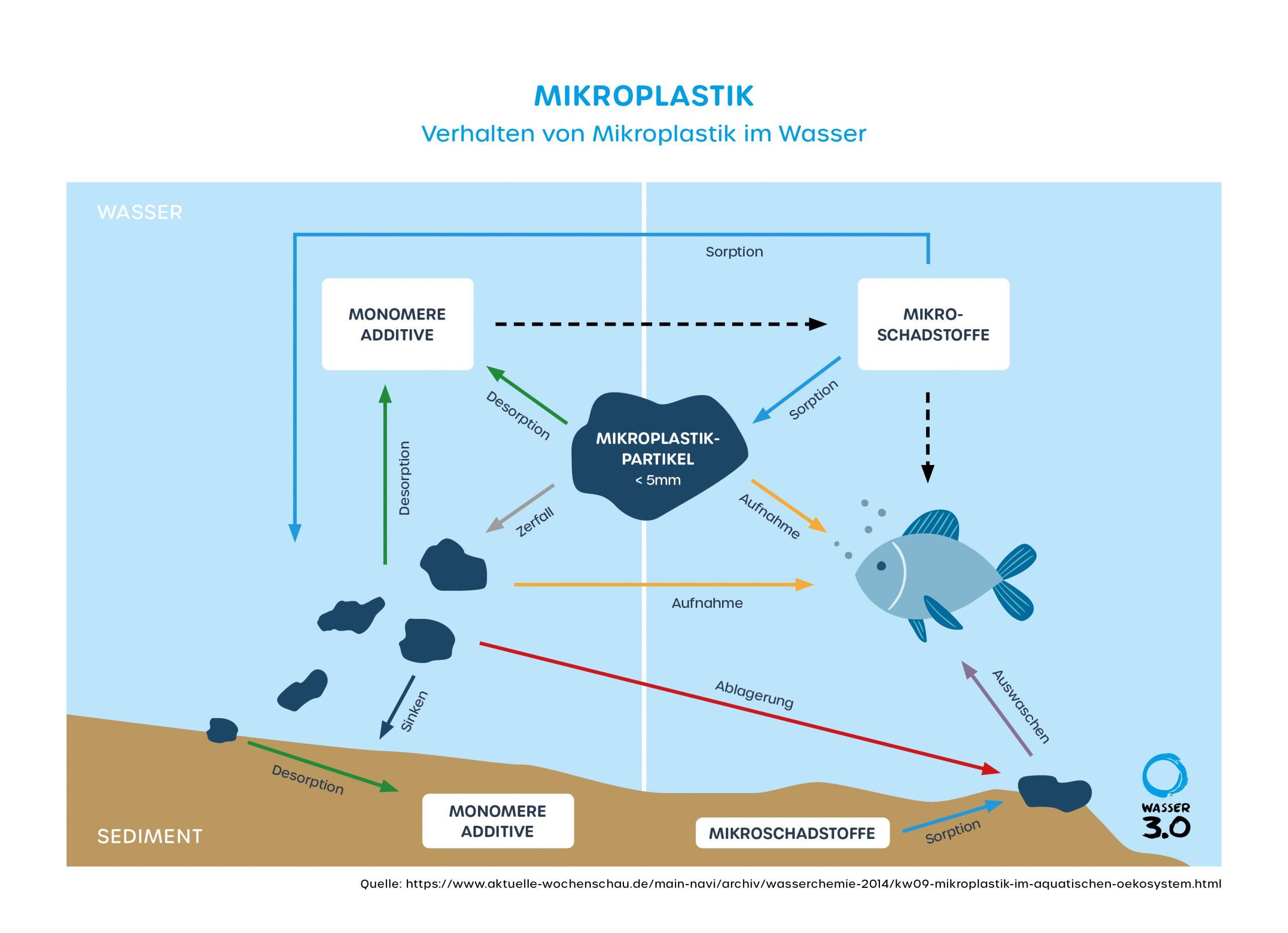 Mikroplastik: Verhalten der Partikel im Wasser