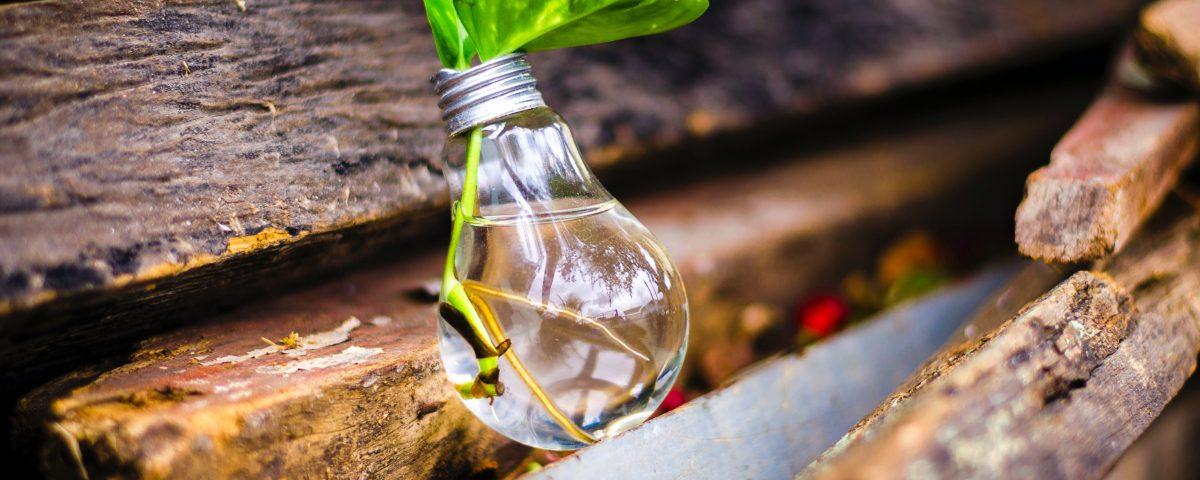 Innovationen im Wassersektor